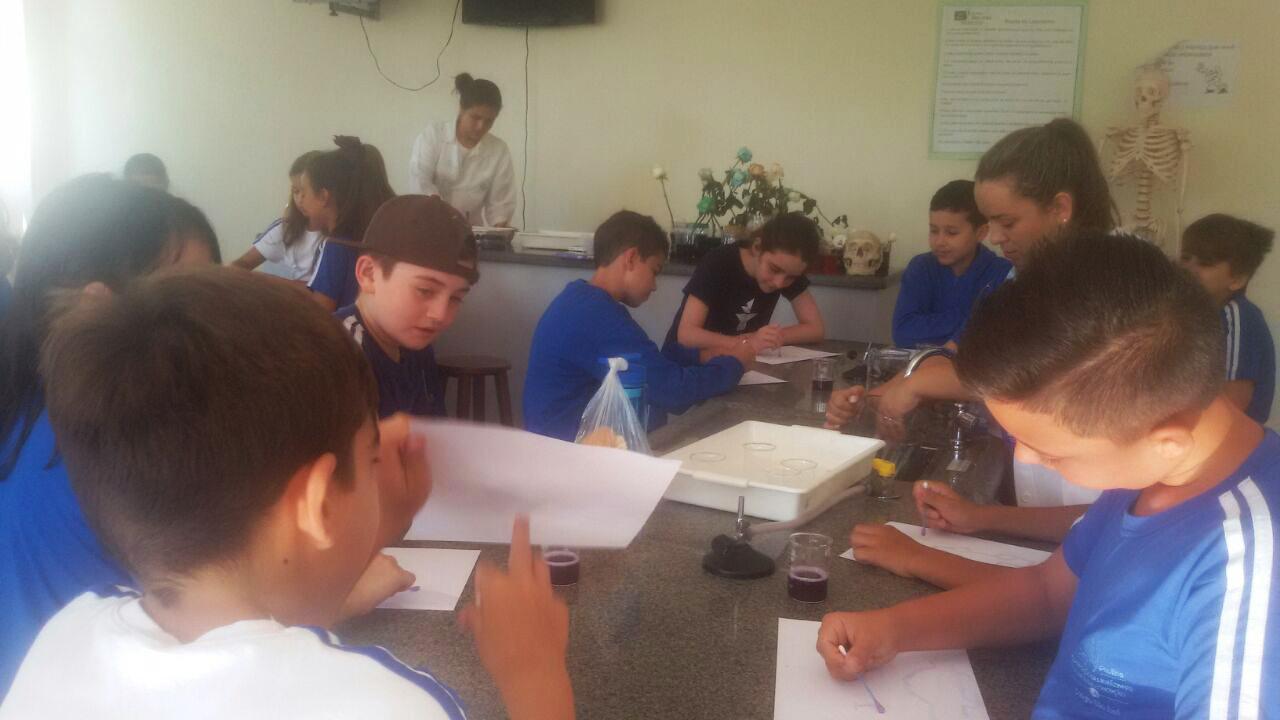 ENSINO FUNDAMENTAL: Quintos Anos produzem tintas naturais